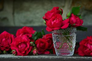 roses-821705_960_720