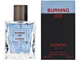 Iceberg Burning Ice Moška dišava