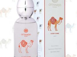 OTTANIQO My Journey Collection