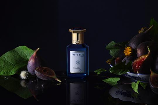 Nova dišava Shay & Blue – Dandelion Fig