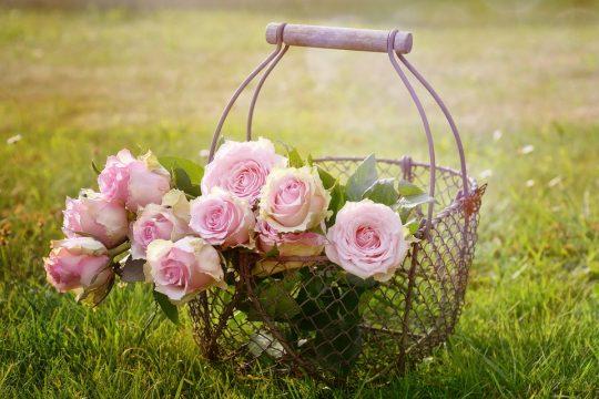Dišave cvetličnih vonjev