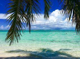 Tommy Bahama – je zares iz Bahamov?