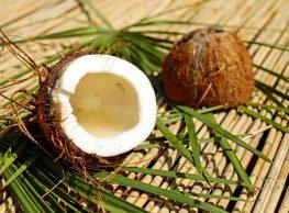 Kokos ker te ljubim kokos
