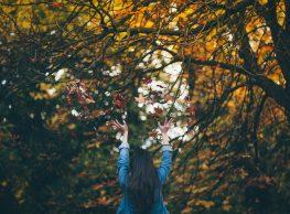 Vonji jeseni